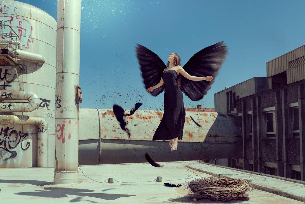 BlackBirdBorn_Web2048.jpg