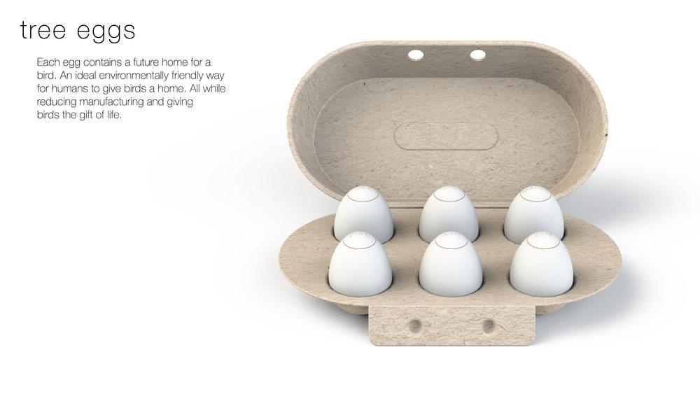 Eggs-01.jpg