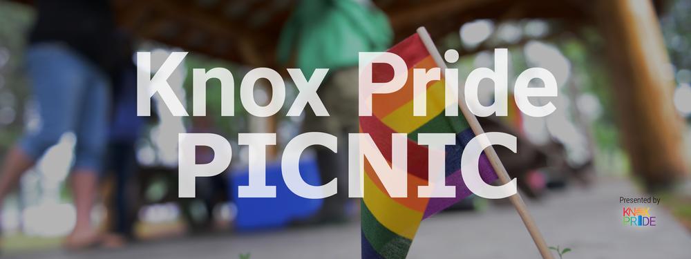 2017 Pride Picnic Web.png