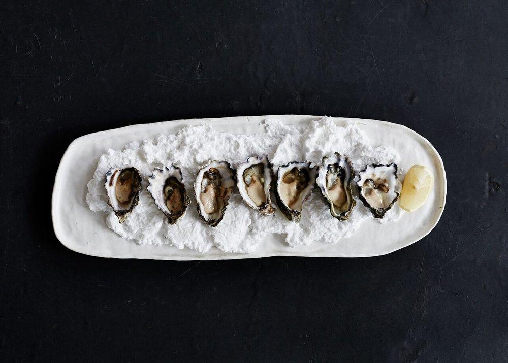 Oysters (Photo- Jenah Piwanski) .jpg