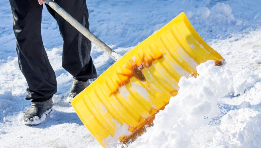 shovel.jpg