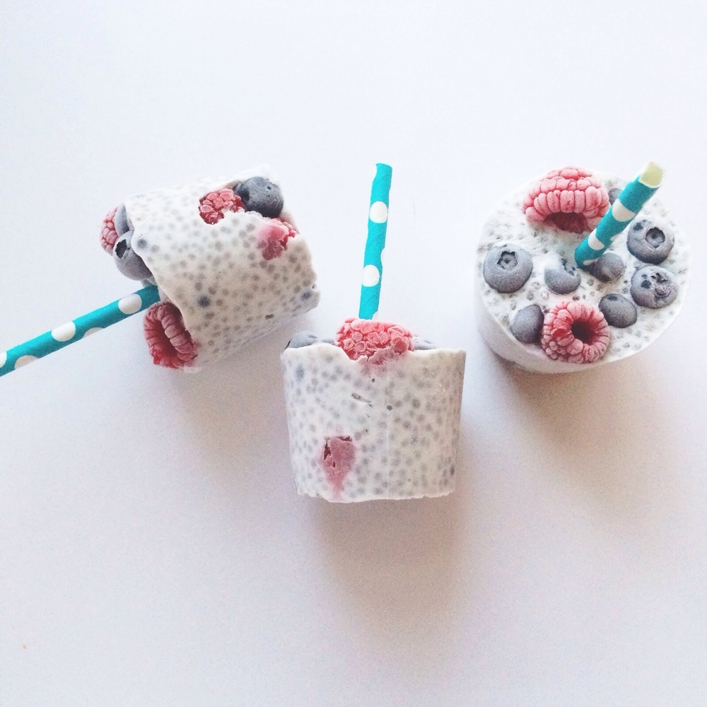 Coconut Chia Pudding Popsicles