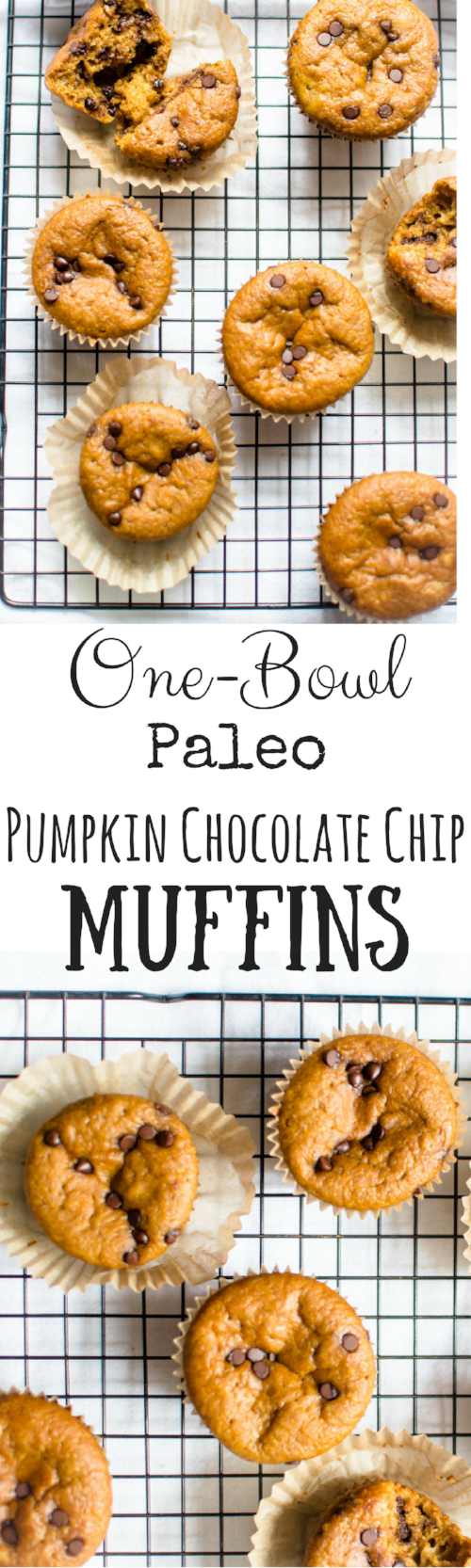 One-Bowl Paleo Pumpkin Chocolate Chip Muffins