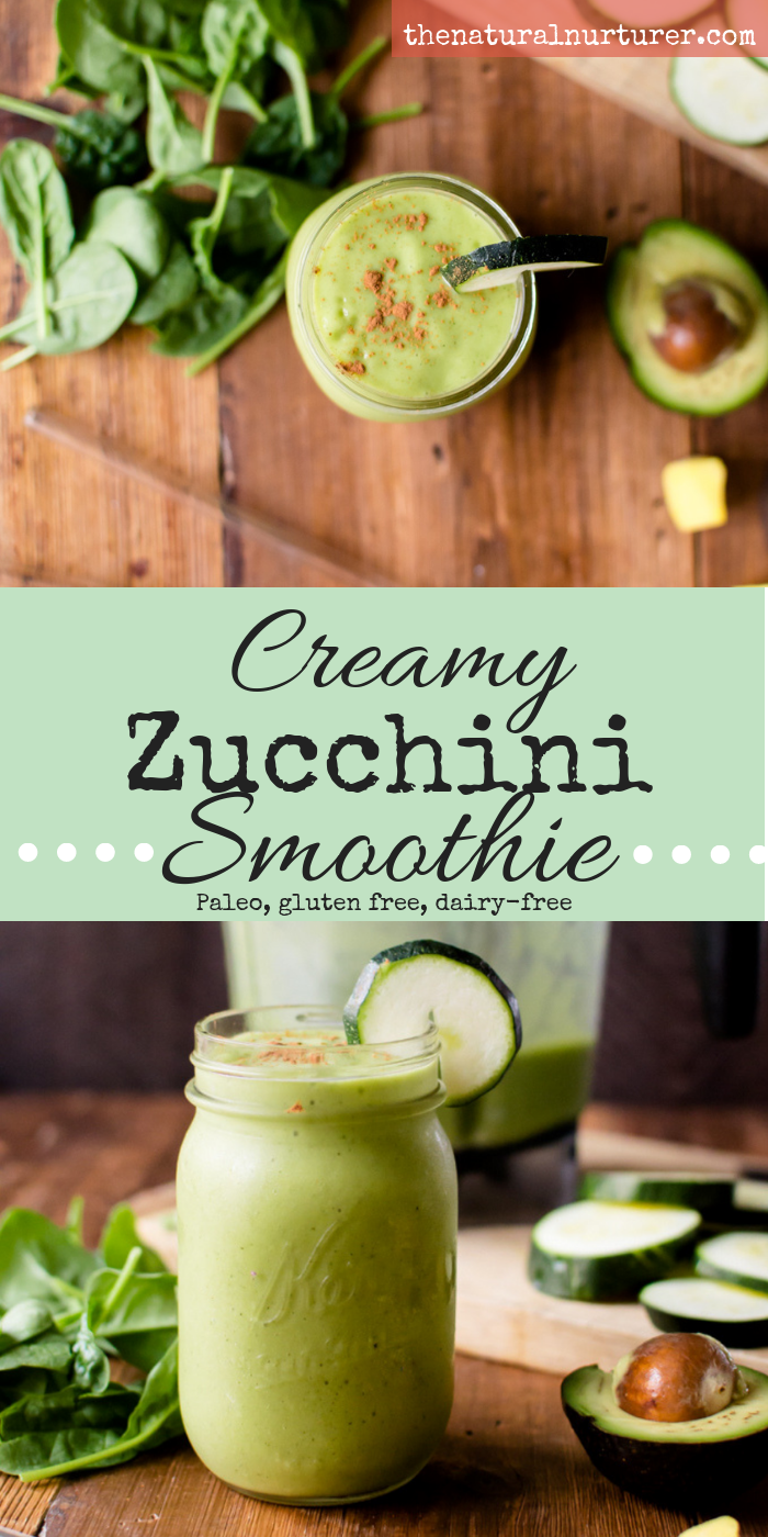Zucchini in a smoothie? Yep, that can totally be a thing! A great way to use up your end-of-summer squashes or a delicious blend to get extra veggies in, Creamy Zucchini Smoothie is dairy-free, Paleo, and the perfect breakfast or snack for a busy day! #paleosmoothie #dairyfreesmoothie #veggieloadedsmoothie #thenaturalnurturer #thenaturalnurturerrecipes #healthybreakfast #veggieloadedbreakfast #easyhealthybreakfast