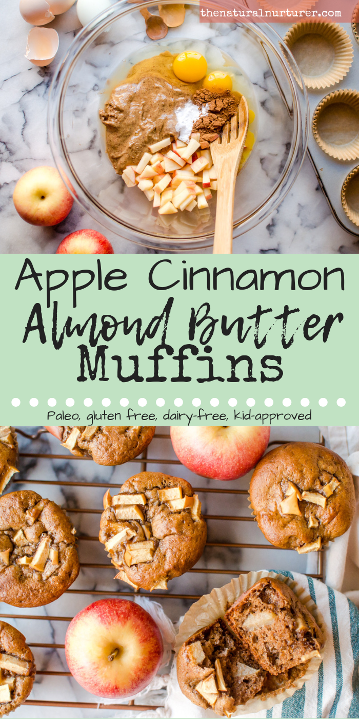 One bowl and 7 squeaky clean ingredients is all that stands between you and these easy peasy Apple Cinnamon Almond Butter Muffins. Sweetened by nature and serving up some serious healthy fat and protein, these muffins are the perfect thing to start the day off right or to keep on hand for a healthy snack! Naturally Paleo, gluten free and dairy-free! #paleomuffins #glutenfreemuffins #dairyfreemuffins #healthymuffins #easymuffinrecipe #thenaturalnurturer #thenaturalnurturerrecipes