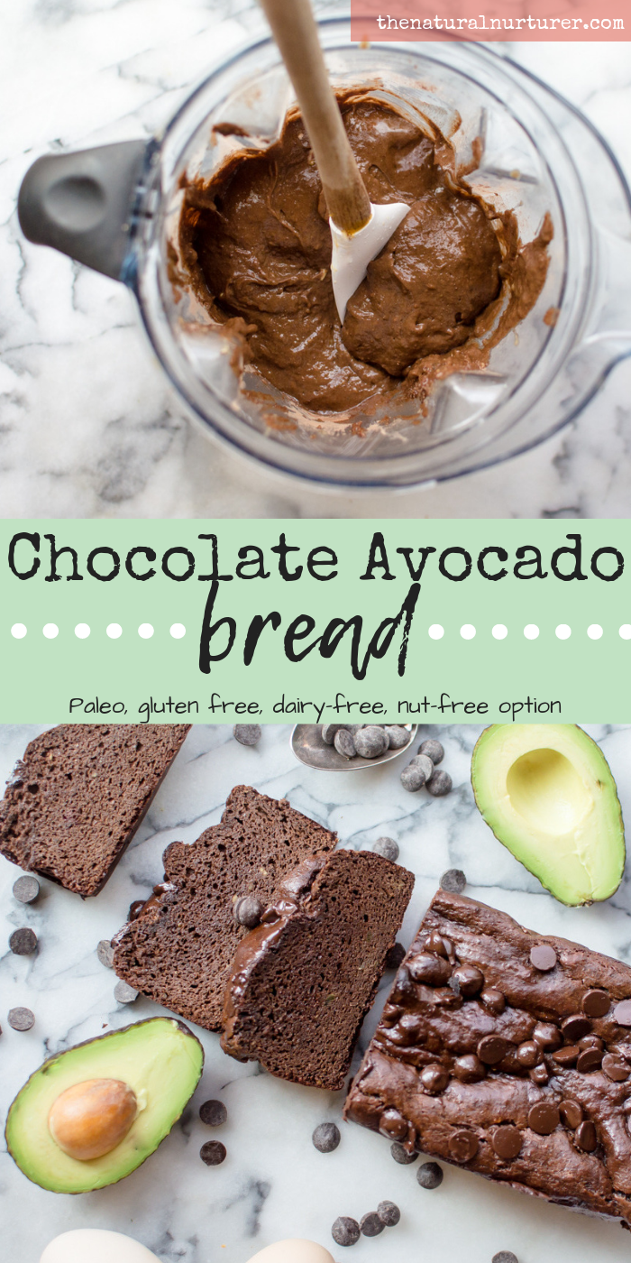 Perfectly moist, slightly sweet and loaded with healthy fat, this Chocolate Avocado Bread quickly comes together in your blender and is naturally gluten free, dairy-free, Paleo, veggie-loaded and has an easy nut-free option! You'll be surprised how simple this delightful little treat is to make for breakfast, snack or dessert. #paleodessert #hiddenveggies #glutenfreedessert #paleobaking #glutenfreebaking #dairyfreedessert #dairyfreebaking #veggieloaded #dessertswithhiddenveggies #Healthydessert #healthytreat #thenaturalnurturer #thenaturalnurturerrecipes