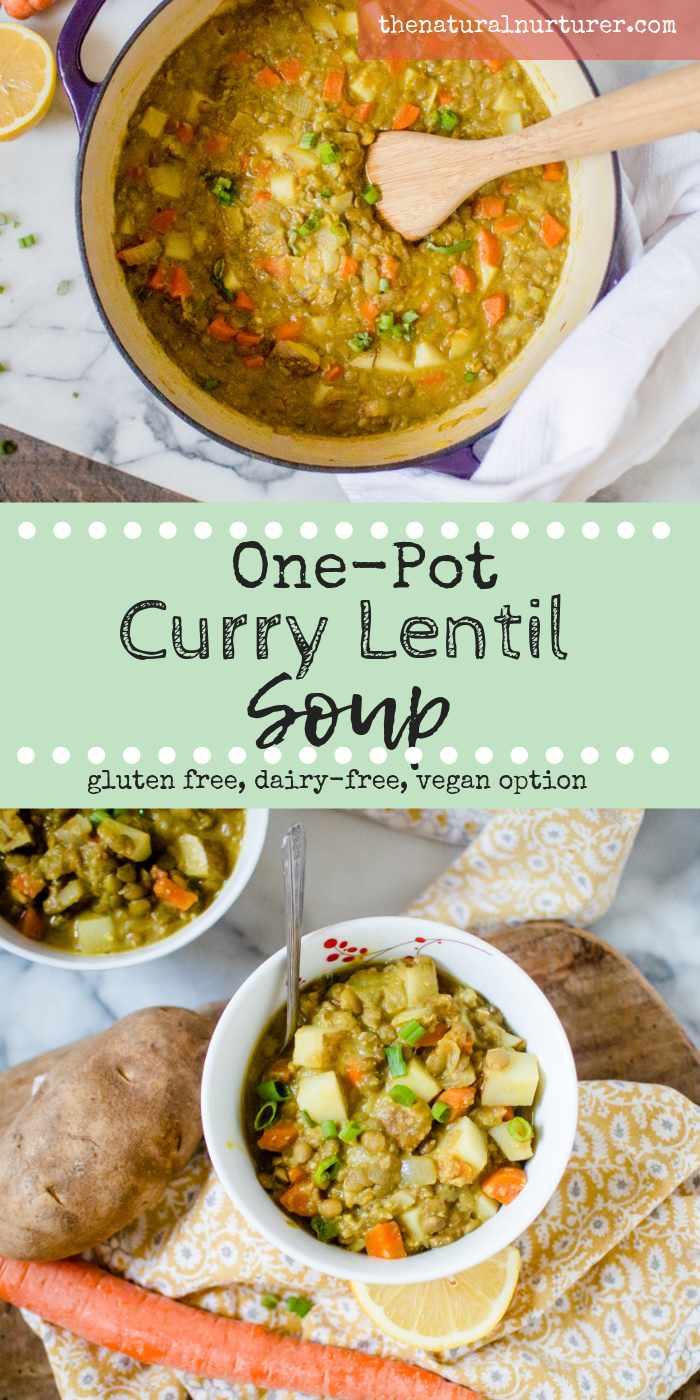 One-Pot Curry Lentil Soup might be the coziest thing I can think to curl up with! Made with just the right amount of warming spice, this soup is full of flavor while still staying family friendly. Made in one pot in about 30 minutes, it is the perfect end to your winter day. #veggieloaded #veggieloadedsoup #vegansoup #vegetariansoup #kidfriendlysoup #kidfriendlyspice