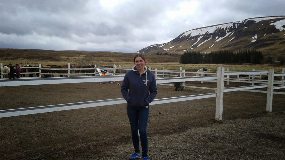 This shot is from the mountains in Iceland, when I did a Viking Horseback Riding tour!