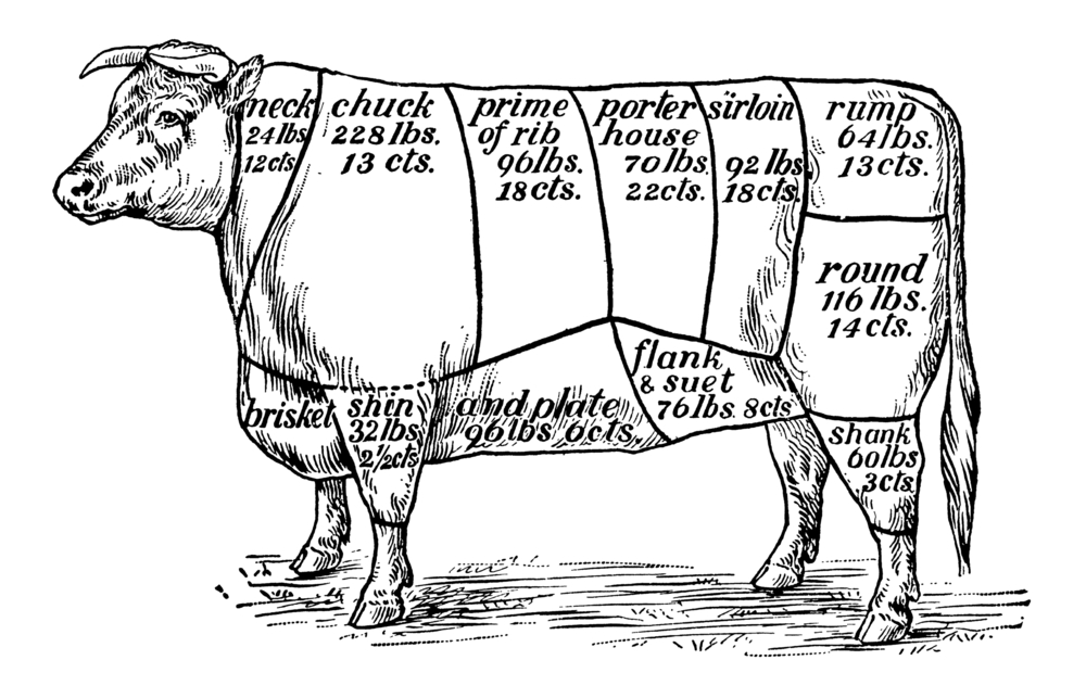 Cuts of Beef Illustration 8353136_Full.jpg