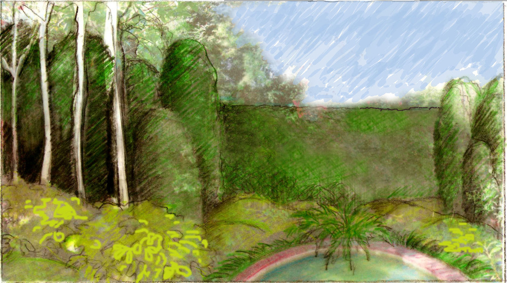 Sketch of mixed conventional and columnar hedging   we used to hide the wooden fencing and create an illusion of depth. Alongside this is the pond we wreathed with dwarf Agapanthus and a fern corsage.