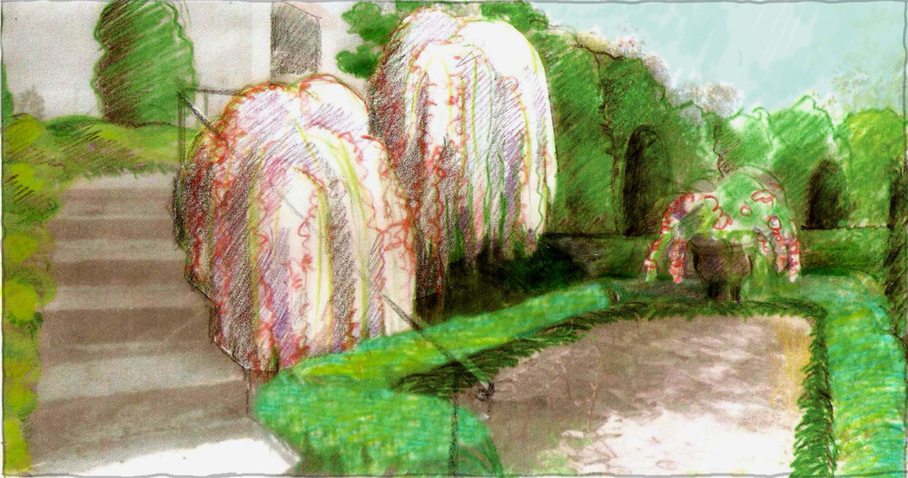 Sketch of the intimate garden room we created with Weeping Cherry, Camellia, dwarf Agapanthus, Amaryllis and Jasmine. Elegant hedges in diverse shades of green add form, depth, and privacy.