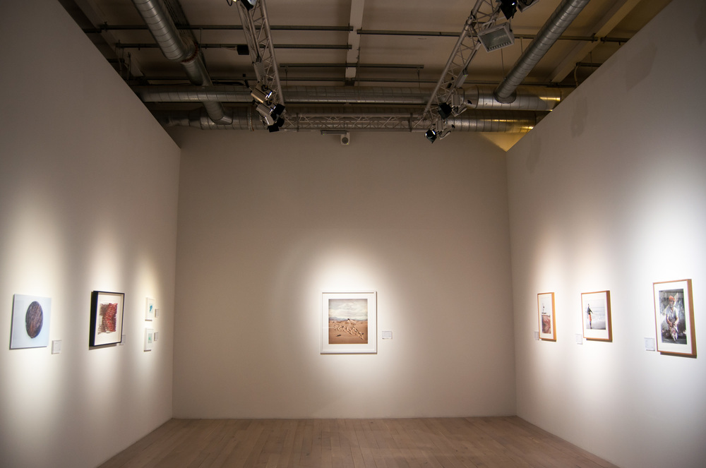 Anna Bruce stitch and oceana 2014 (49 of 85).jpg