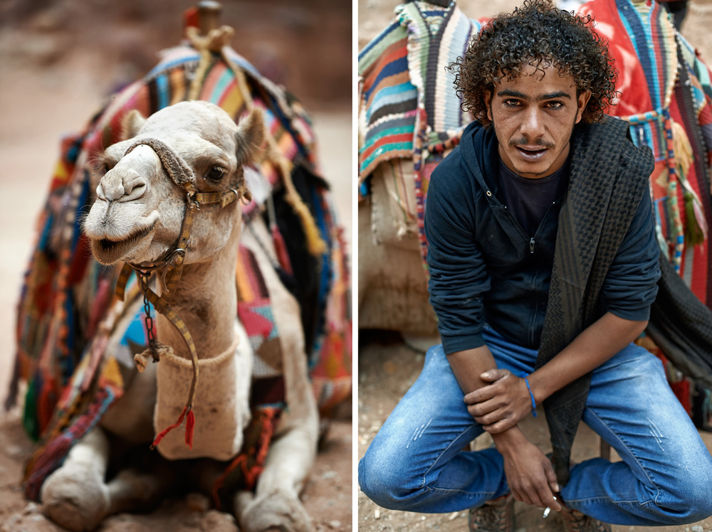 camel-portrait DOUBLE.jpg