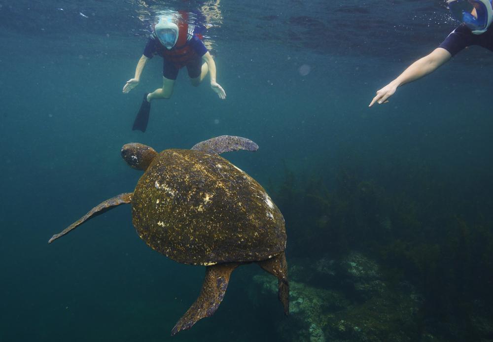 Galapagos_1271.jpg