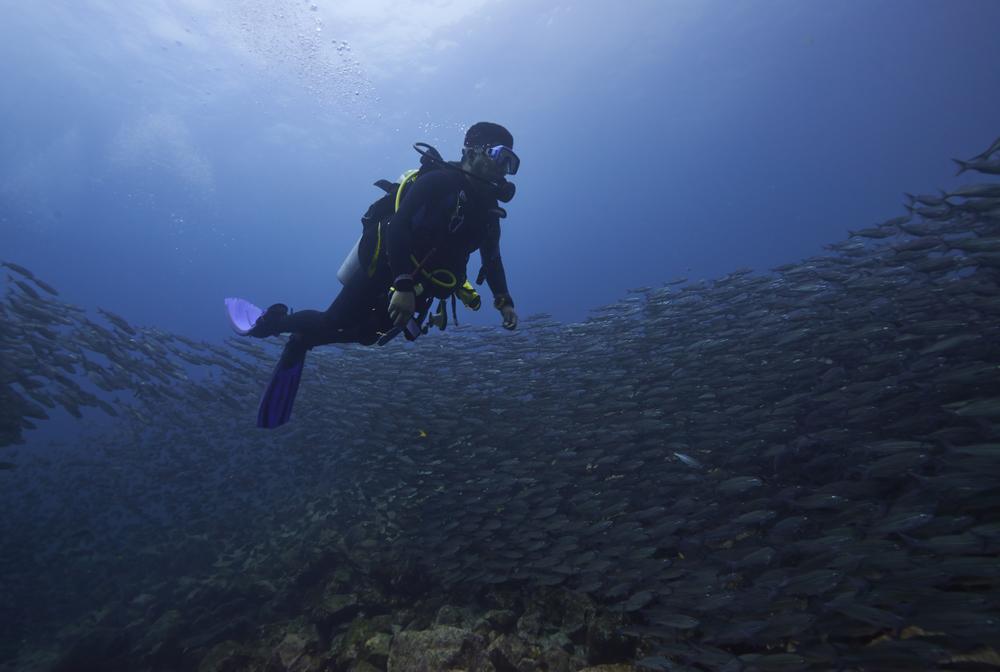 Galapagos_2040.jpg