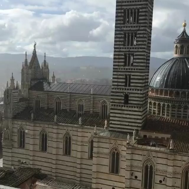 Unbelievable day in Siena today. Wonderful food and then we burned it off by climbing 1 million steps for some of the best views I've ever seen. #Internhoneymoon