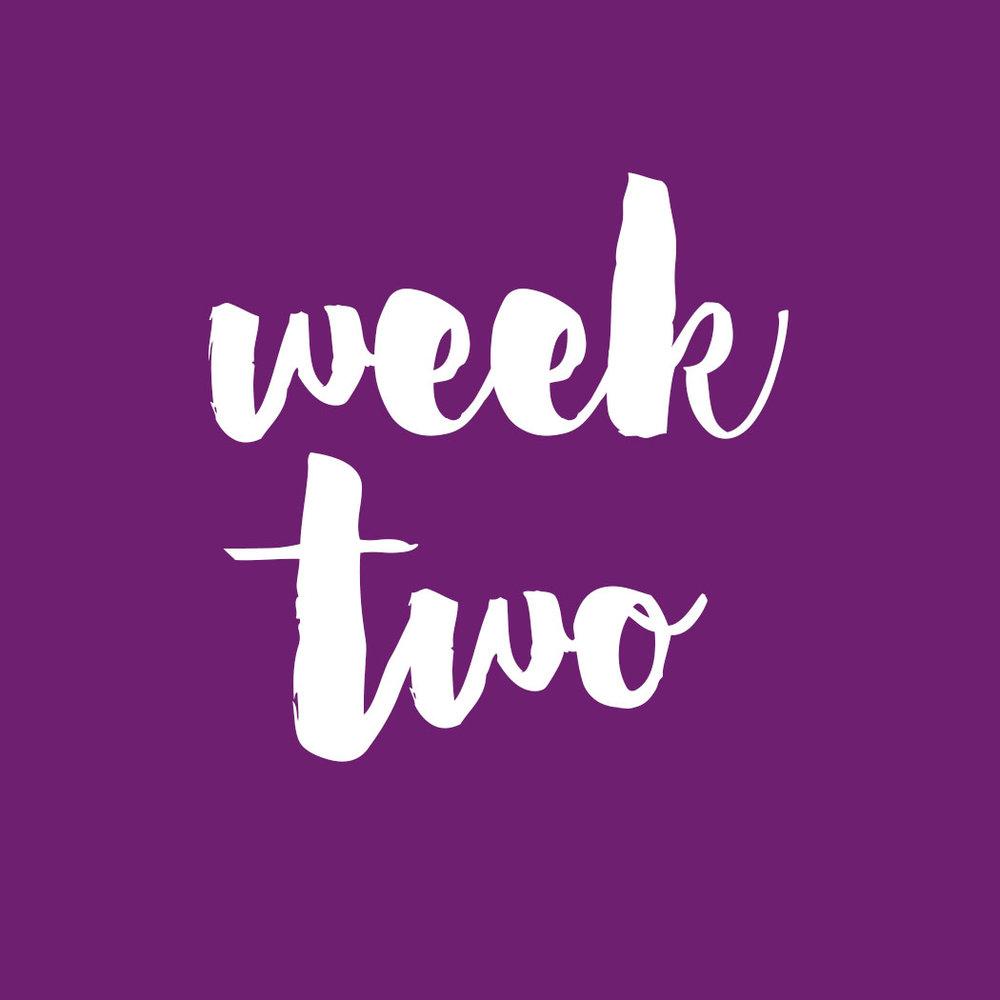week 2.jpg