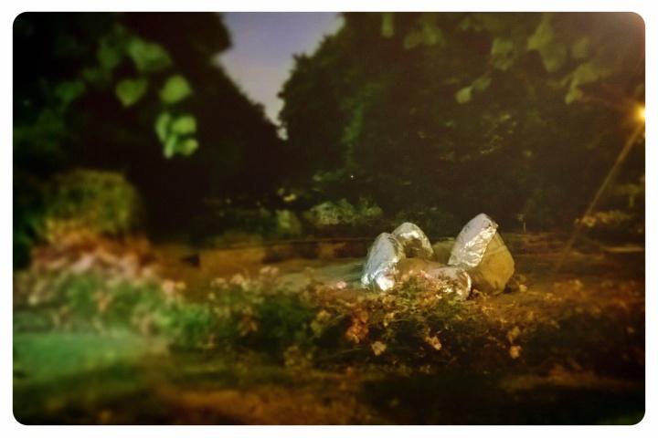 2014 Eleanor Davies Lucas Gardens, SE5 8PX.jpg