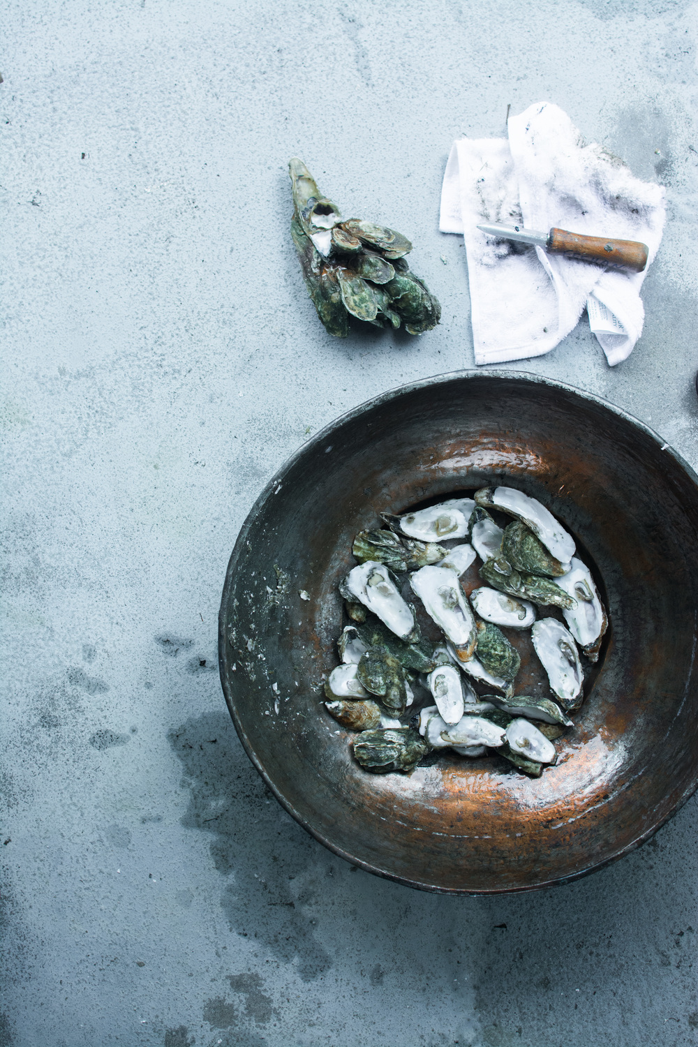 oysters-6.jpg