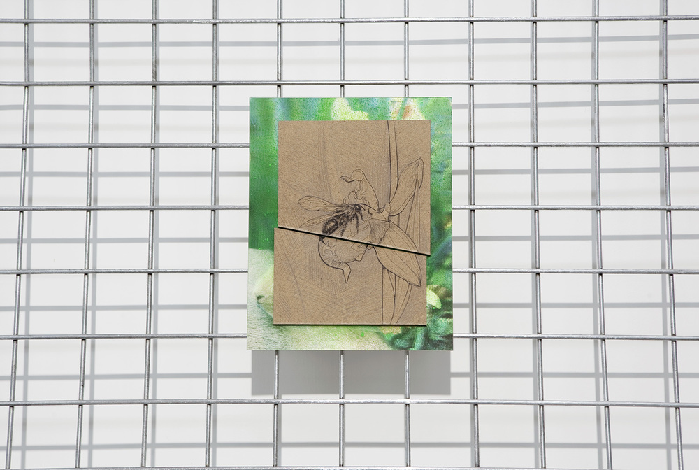 Involuntary Pseudocopulation on a Thin Involuntary Florescent Green Line , pencil, ink, spray paint, lenticular photography on board on metal fence, 228 x 122 cm, 2013 (created for a residency in Cyrus)