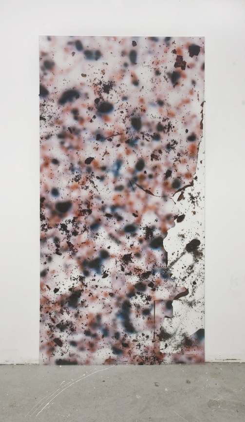Veneerist   2012 Direct to substrate print on two acrylic panels 96 x 48 in/ 243.8 x 121.9 cm