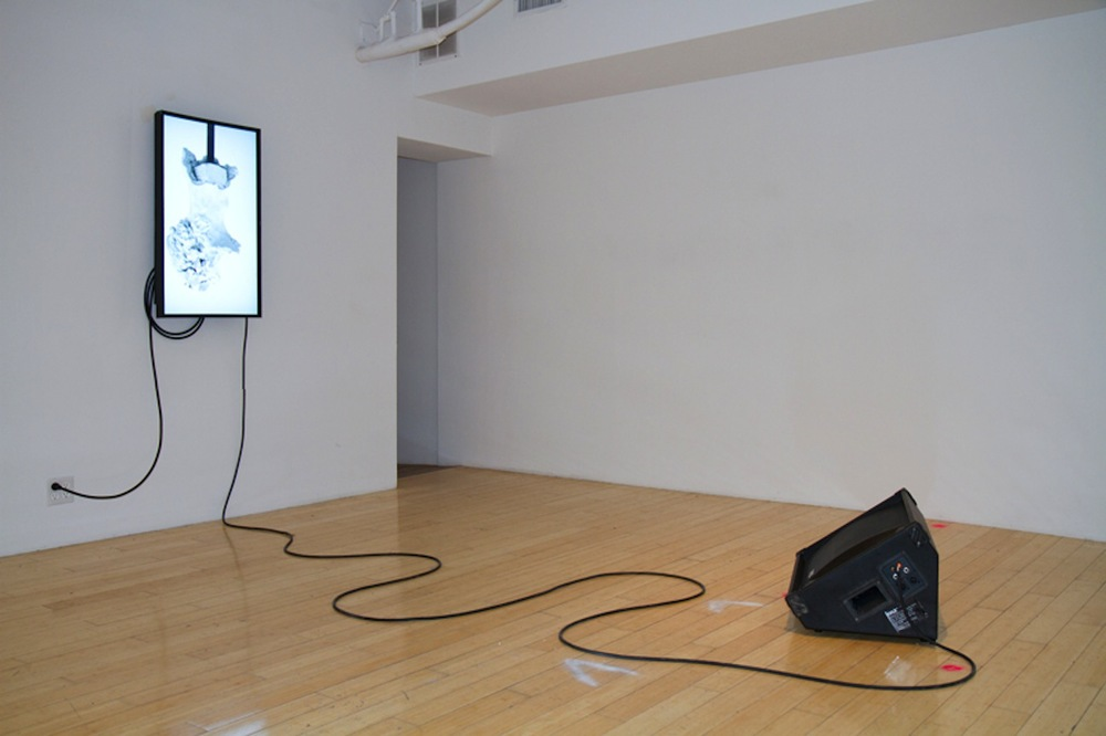 Instrument  INSTALLATION VIEW  2013 Single-channel video generated by a customized software algorithm, sound of artist breathing digitally, floor monitor speaker 8 hour timed sequence that auto-plays between the hours of 10-6pm Tuesday-Saturday Edition of 3
