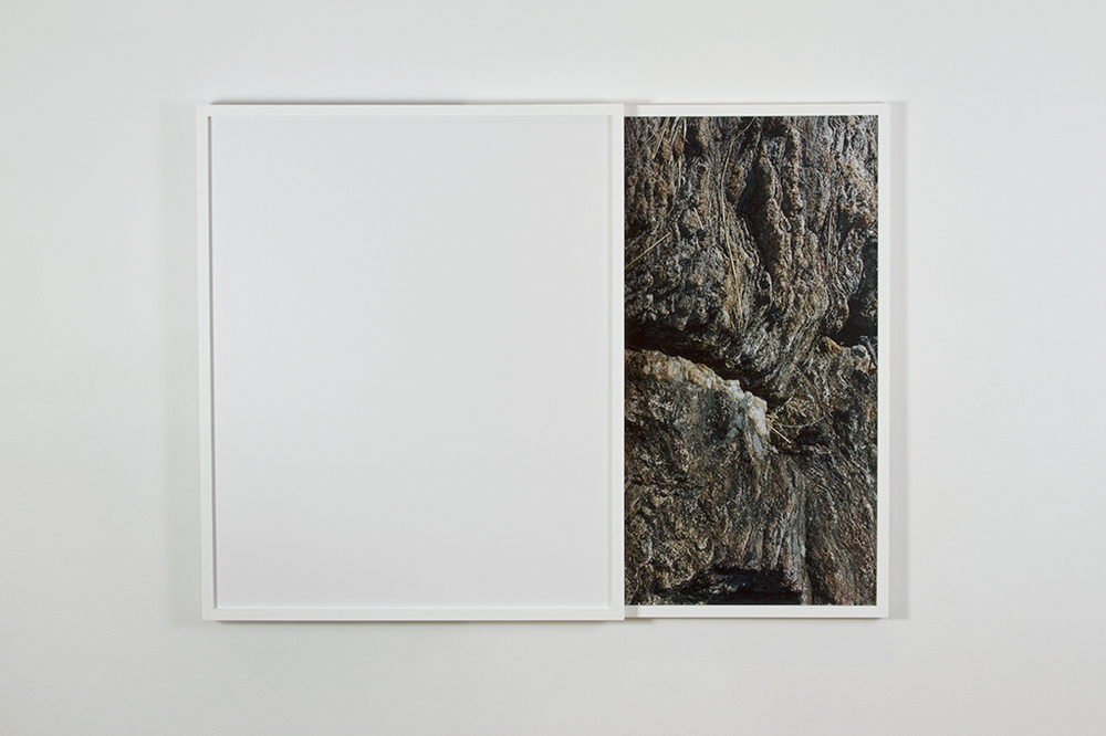 Carey Denniston  To what degree a stone is a stranger / To what degree it is withdrawing, (R)  2013 C-prints and custom wood frames 35  ½  x 47  ½  x 2 in/ 90.2 x 120.7 cm