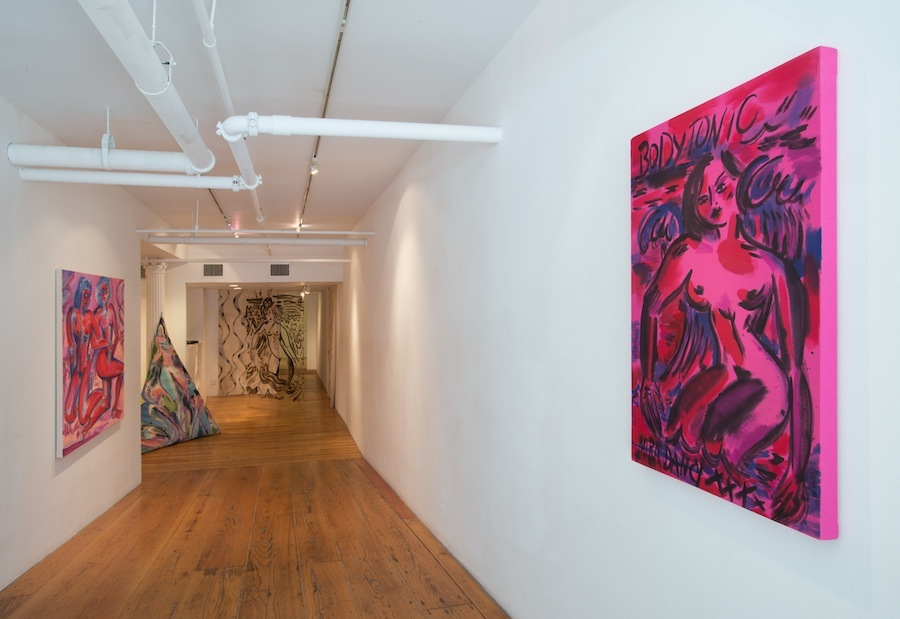 Installation View   Bodytonic  KANSAS