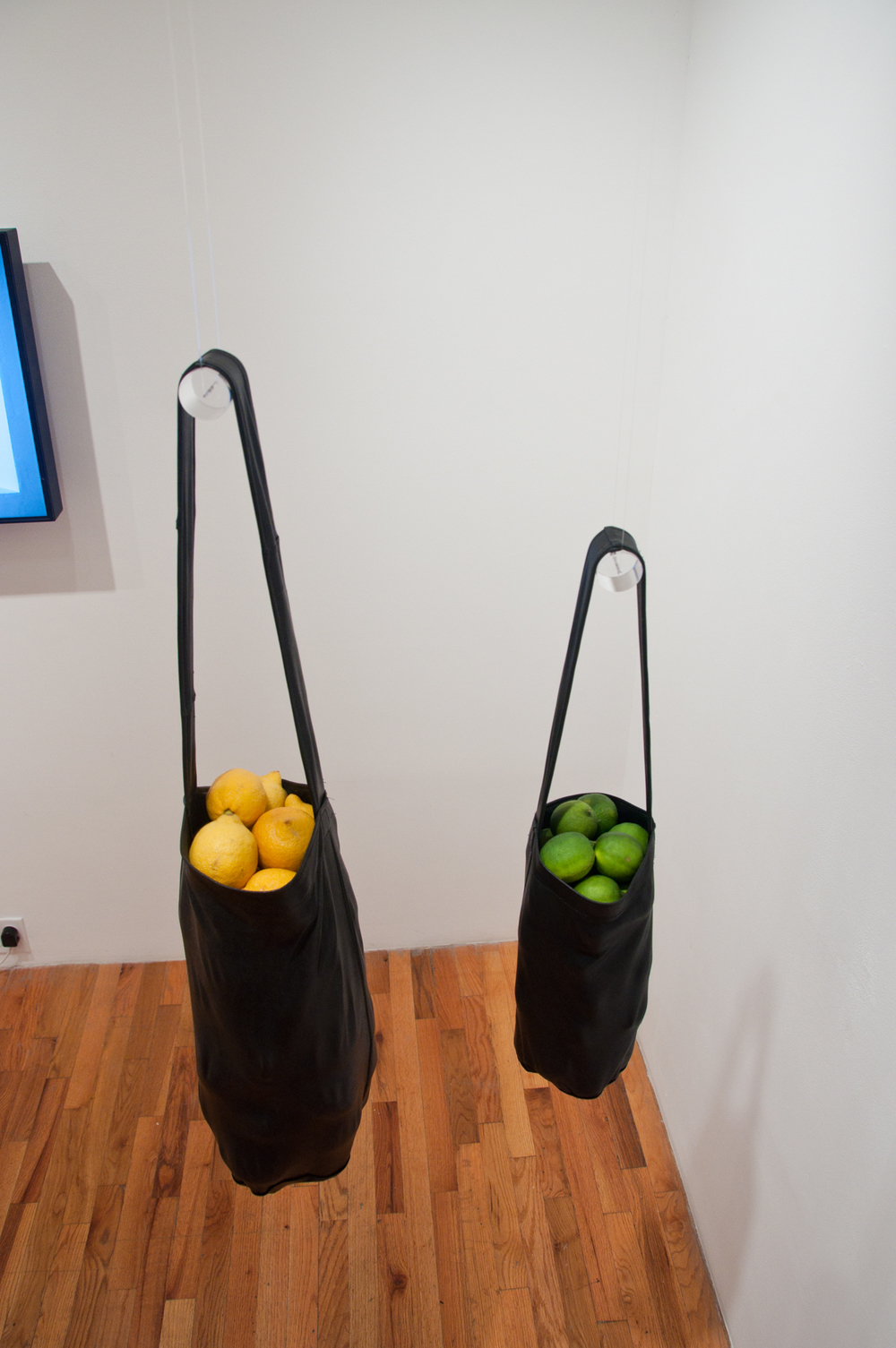 Chloe Wessner   Leather lemon, leather lime   2012  Leather bag, fresh lemons and limes  Dimensions variable