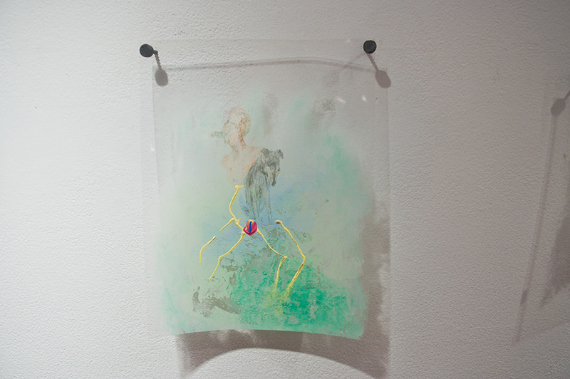 Ann Hirsch   StareDog   2012  Puffy paint, colored pencil and pencil on transparency  8 ½ x 11 in/ 21.59 x 27.94 cm