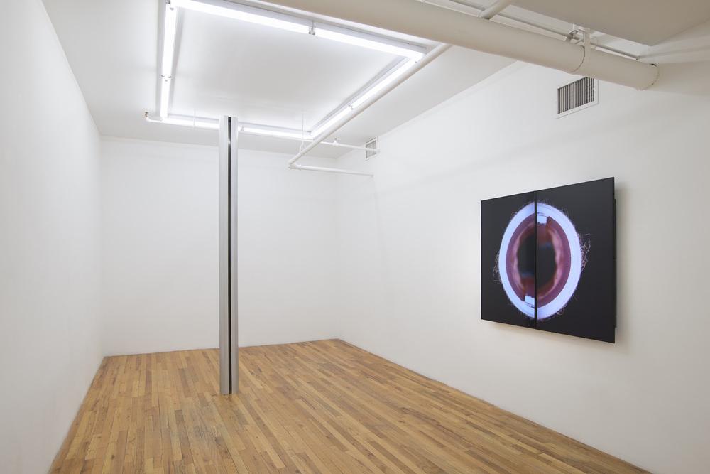 Installation View  David J Merritt:  Flesh of My Flesh   KANSAS