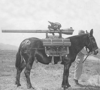 army-horses-mules_pack_01_700.jpg