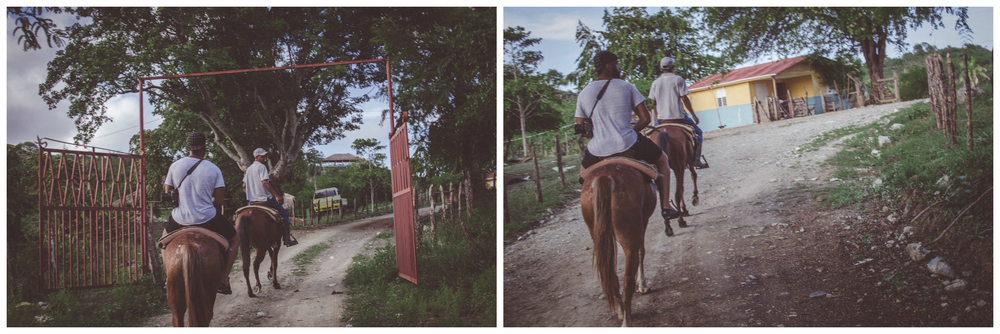 kanayo horse.jpg