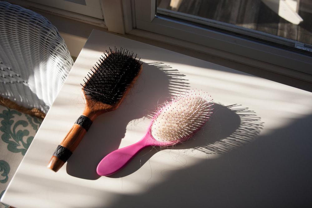 Hairbrushes,  2018