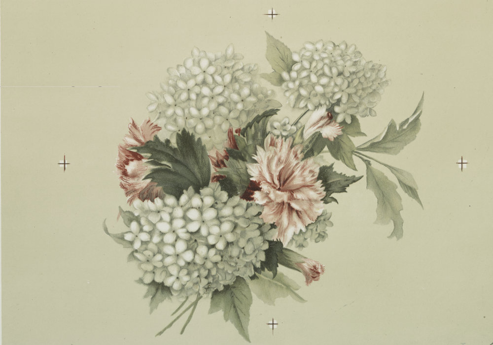 flower postcard.jpg