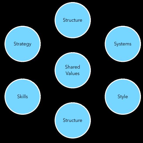 McKinsey 7S Framework