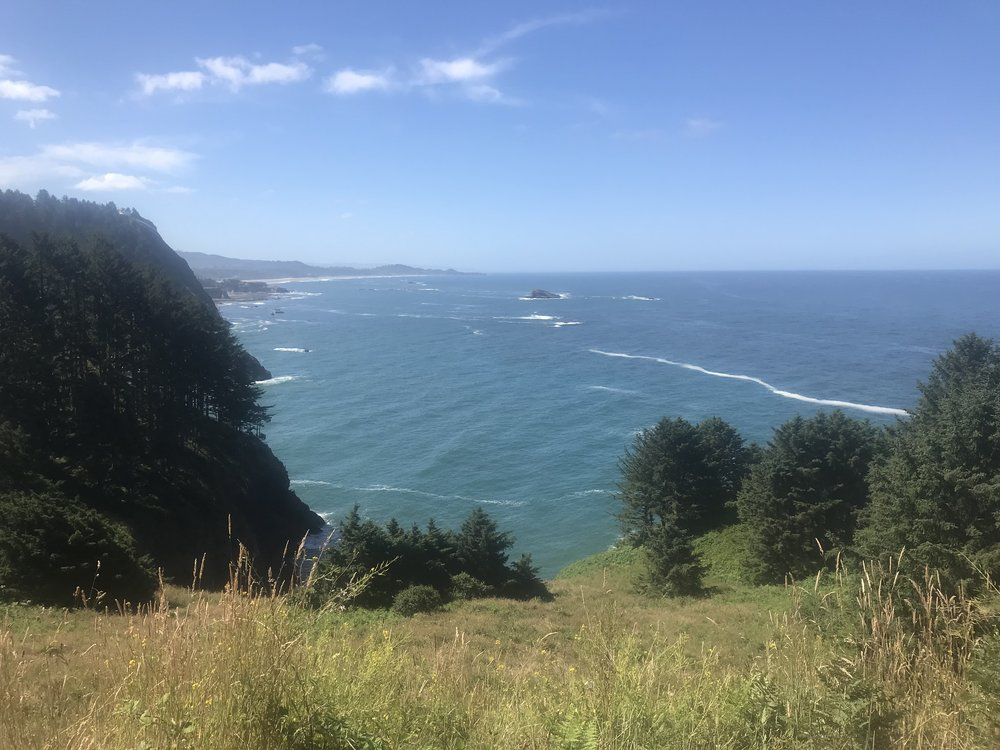 Views around Depoe Bay. We saw dozens of gray whales here, spouting just off shore.