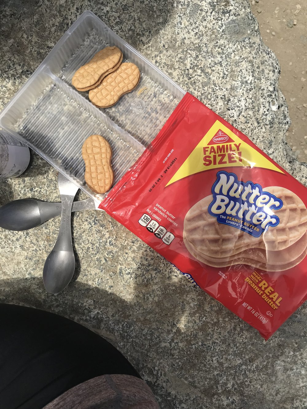 ...a family size package of Nutter Butters, which we ate in 24 hours. No shame!