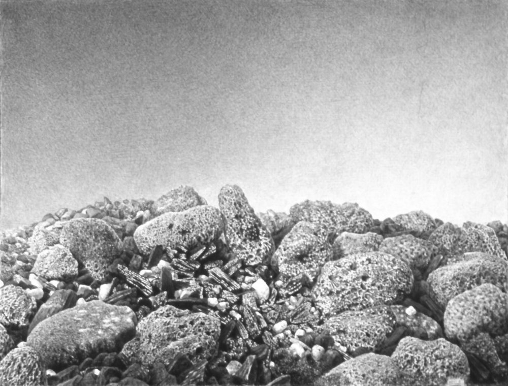 "<b>ERIC WERT</b><i><br>Untitled</i><br>graphite on paper<br> 14 x 20 inches (24 x 10 inches framed)<br><font size=5 color=""#ff0000"">●</font></br>"