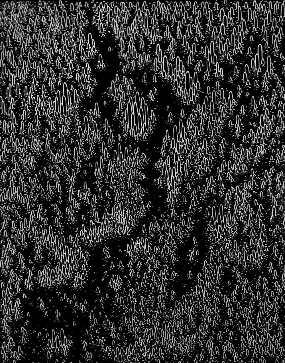 Ebbs and Flows.jpg