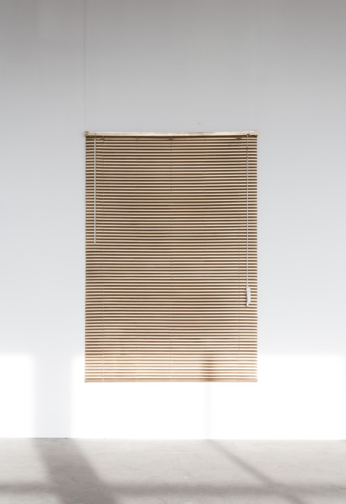 Aaron Koehn,  Golden Blinds,  2013