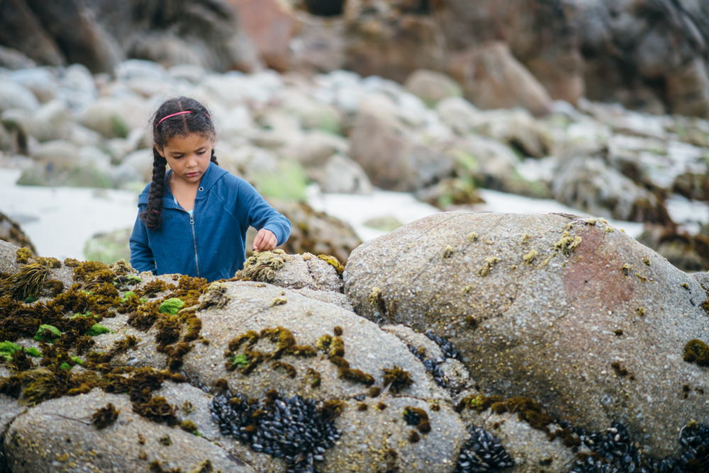 Oakland-San-Francisco-Lifestyle-Family-Photography--Second-Group-(22-of-50).jpg