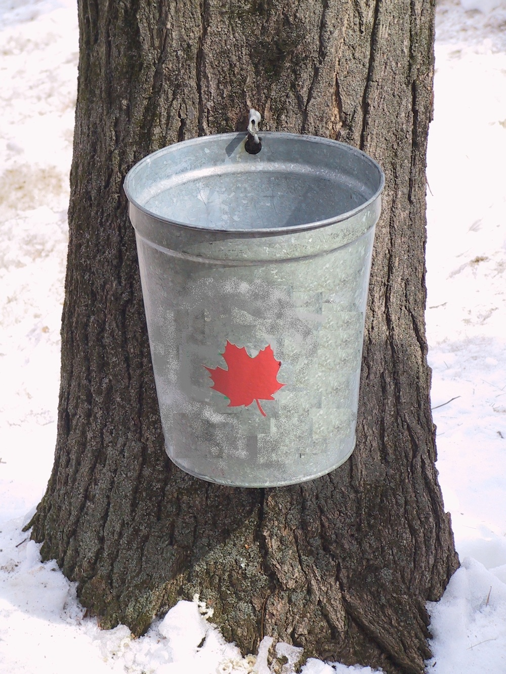 mmmm-bucket.jpg