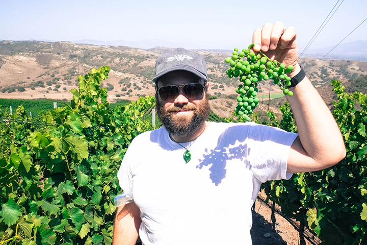 2015  Grenache Santa Barbara Co. | Winemaker, Cris Carter in John Sebastiano Vineyard with Grenache cluster.