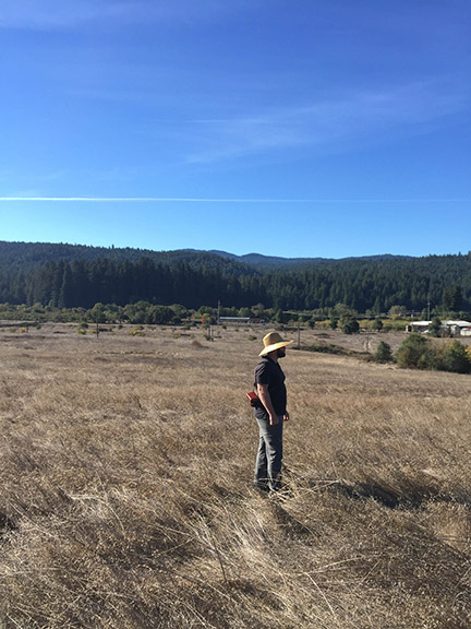 Inspecting the future vineyard site in Anderson Valley, 2016.