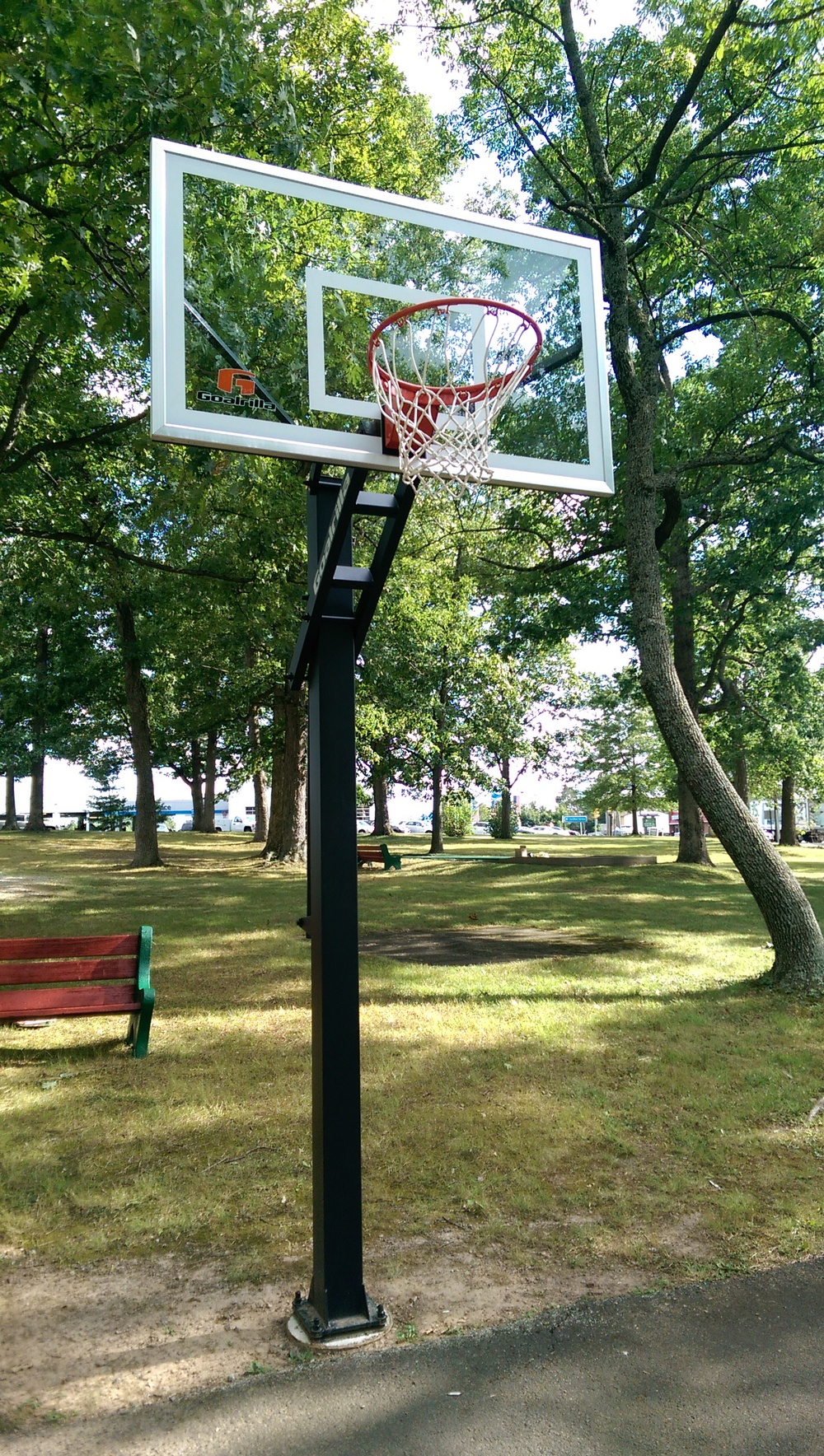 New Basketball Net!