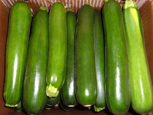 Green & Yellow Zucchini Pack Detail   Tier/Layers      Qty/Pallet 20 lb box         10/8                   80