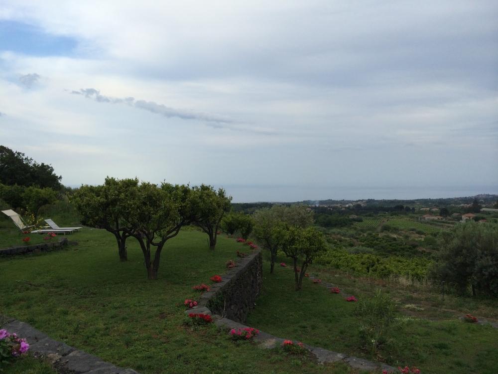 manacci garden view.jpg