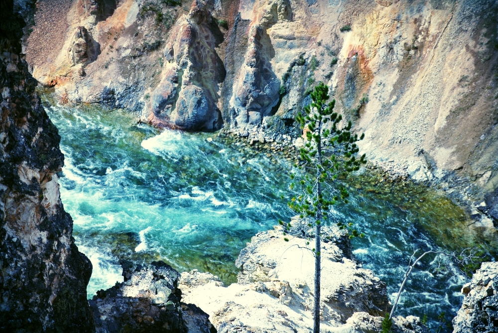 'Color' Yellowstone Canyon, WY.JPG