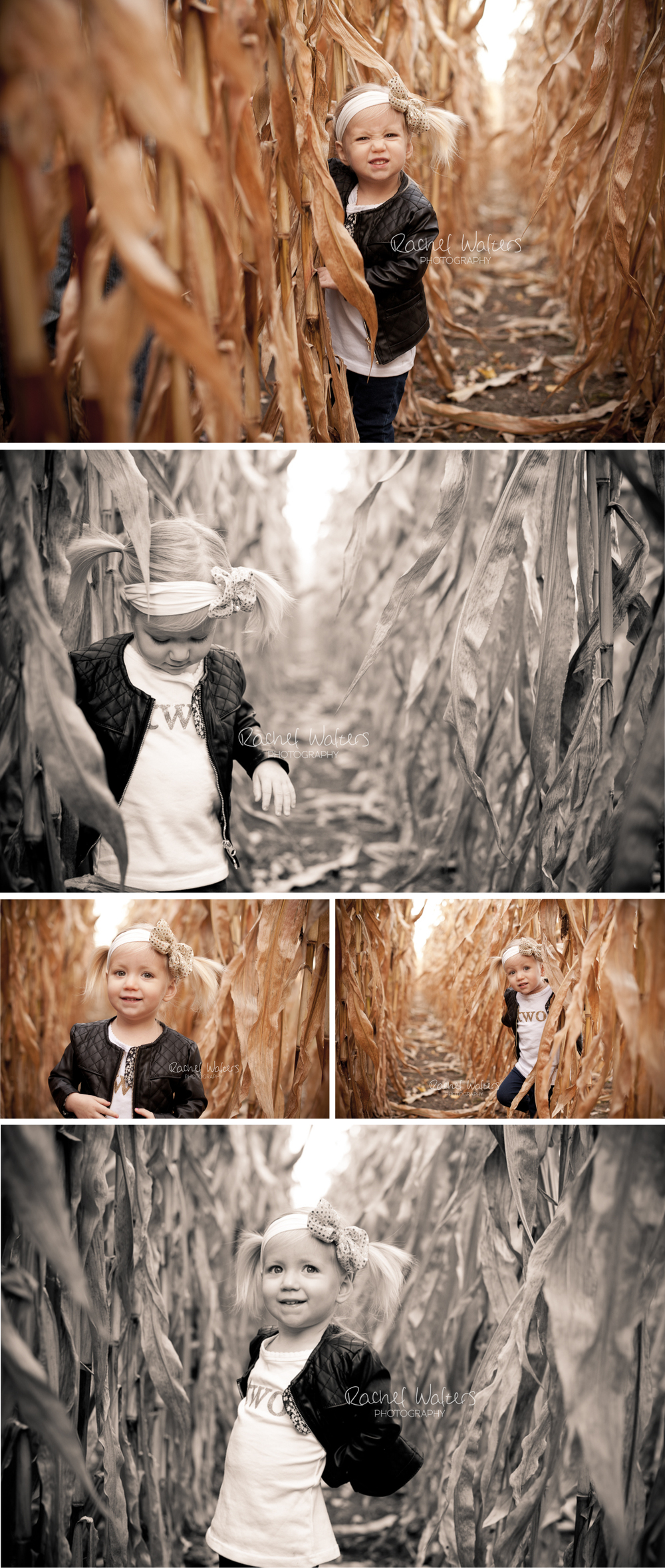 2 Year Girl Photo Session